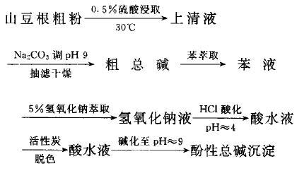 蝙蝠葛酚性生物碱的提取流程图