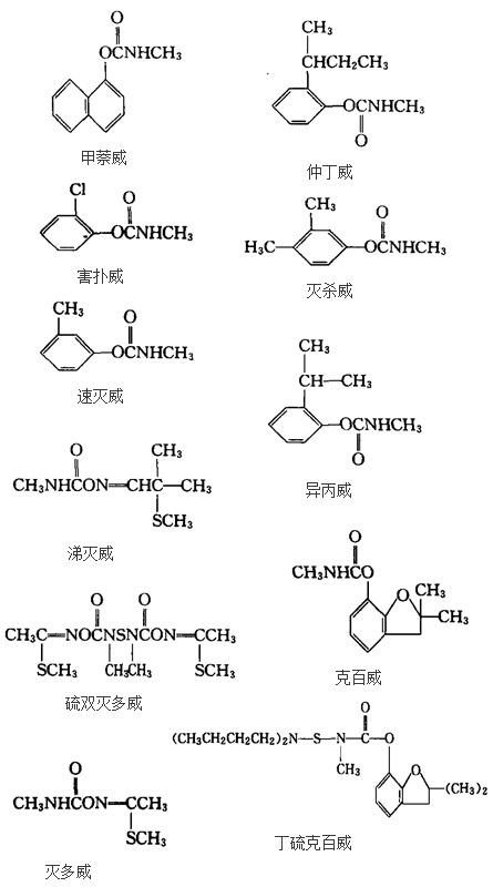 一些已知的氨基甲酸酯类杀虫剂的化学结构式
