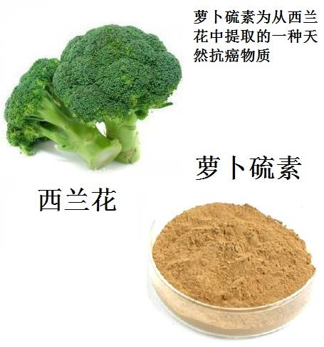 从西兰花中提取的淡黄色萝卜硫素粉末