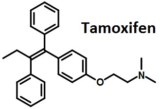 The structural formula of Tamoxifen