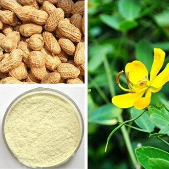 the pale yellow powder of luteolin and its sources of plant