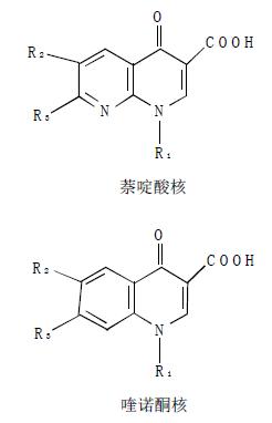 喹诺酮类药物母核主要有两种结构