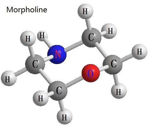 the morpholine structure