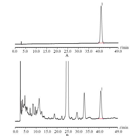 獐牙菜苷 HPLC 色谱图