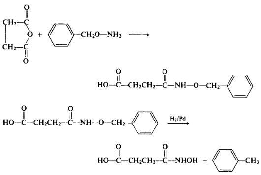 Preparation of N-Hydroxysuccinamic Acid