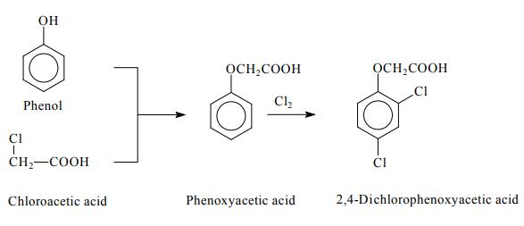 Preparation of 2,4-Dichlorophenoxyacetic acid