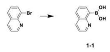 喹啉-8-硼酸的合成