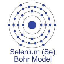 硒的电子模型