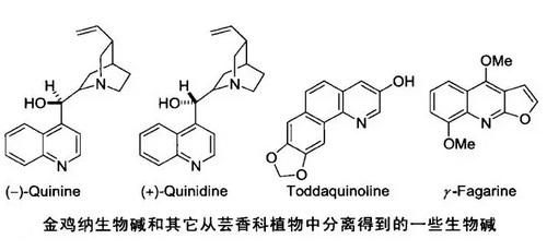 喹啉类化合物