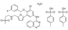 二对甲苯磺酸拉帕替尼