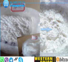 Superdrol Methasterone Methyldrostanolone Raw Steroid Powder Recipes