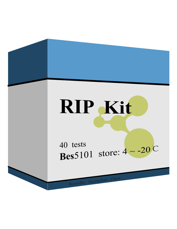 RIP试剂盒