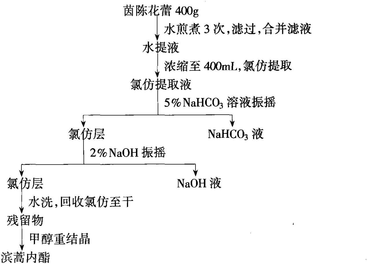 茵陈花蕾提取滨蒿内酯工艺流程图