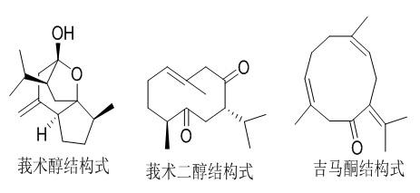 莪术油部分主要成分结构式