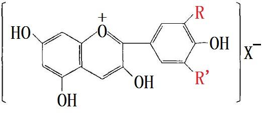 葡萄皮色素主要成分的化学结构式
