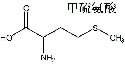 甲硫氨酸 结构式