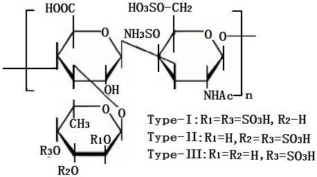 解聚后的海参糖胺聚糖单体