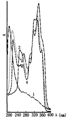 朝鲜苍术的紫外光谱图