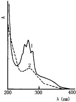 常山及其混伪品的紫外光谱图
