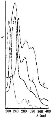 地骨皮的紫外光谱图