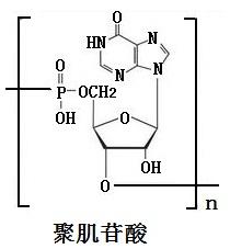 聚肌苷酸的结构式