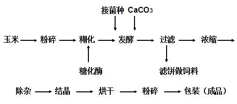 发酵法的工艺流程图