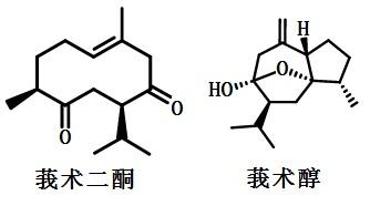 莪术油成分的化学结构式