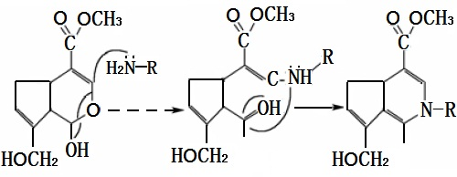 京尼平(C11H14O5)与氨基化合物(H2N-R)的反应机理示意图