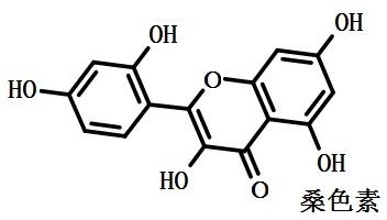 桑色素的结构式