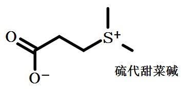 硫代甜菜碱的结构式