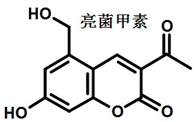 亮菌甲素的结构式