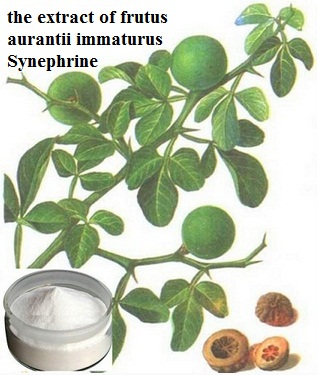 the extract of frutus aurantii immaturus Synephrine