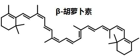 β-胡萝卜素的结构式