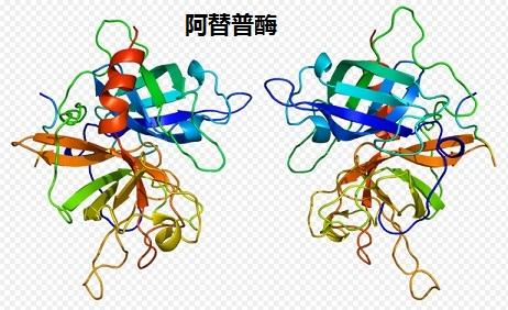 阿替普酶 3D螺旋结构