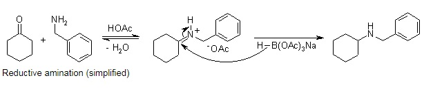 Reductive amination (simplified)