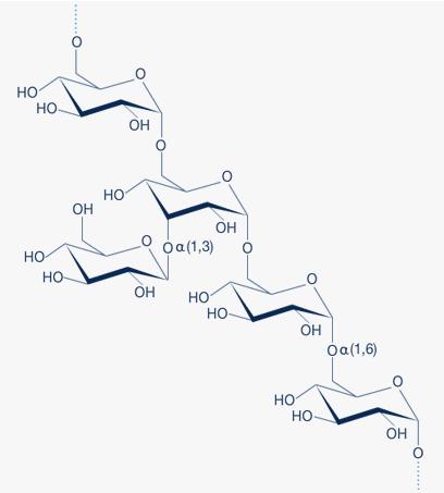 Dextran Structure