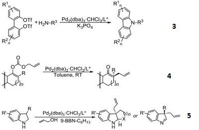 Tris Dibenzylideneacetone Dipalladium Chloroform Adduct