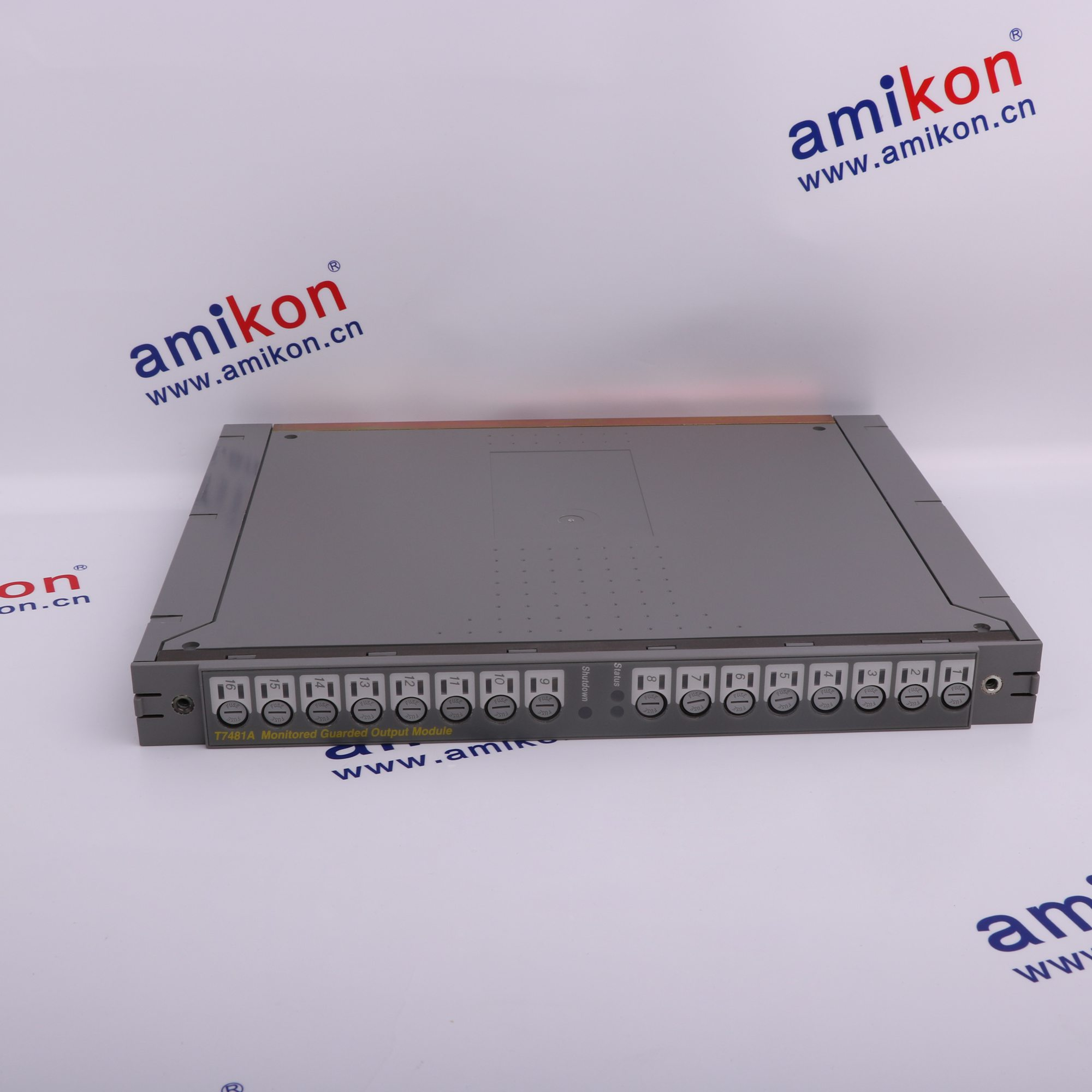 T8431 Trusted TMR Analogue Input Module
